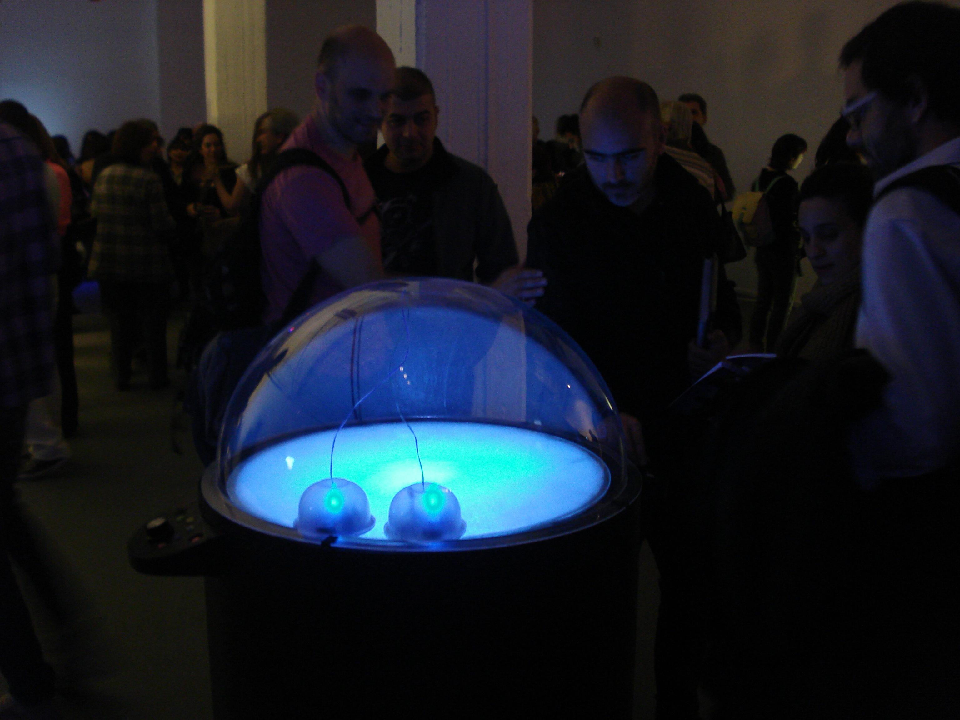 Sinestasia robotica - Bienal Kosice